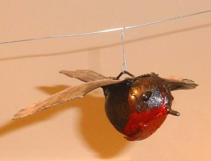 Roodborstje vliegend